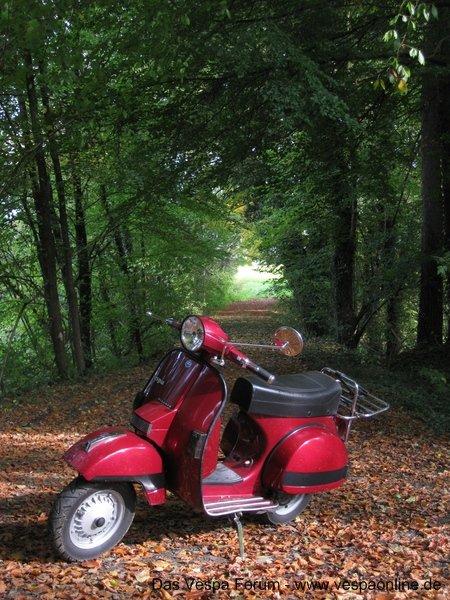 Kleine Herbsttour am 19.10.08