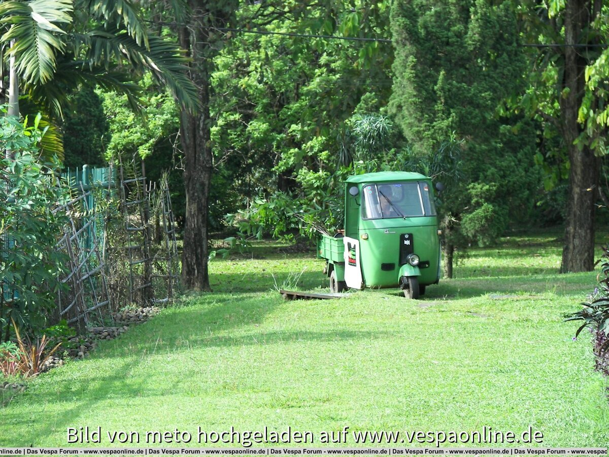 indonesien2008 meto 045.jpg